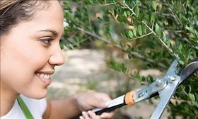 July home-maintenance checklist – MSN Real Estate | Home Maintenance | Scoop.it