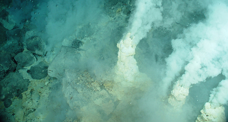 Viruses buoy life at hydrothermal vents | Science News | Virology and Bioinformatics from Virology.ca | Scoop.it