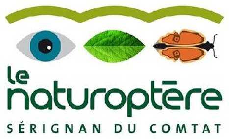 Vaucluse : le Naturoptère est en sursis | Variétés entomologiques | Scoop.it