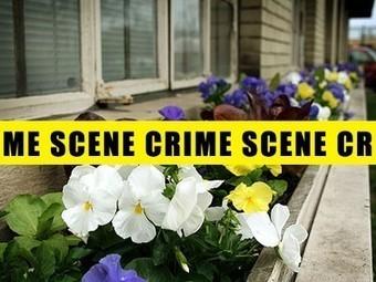 Plants Can Reduce Crime, Prevent Zombie Attacks (Video)   Passe-partout   Scoop.it
