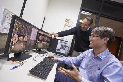 Brain connectivity disruptions may explain cognitive deficits in people with brain injury   Science Codex   California Brain Injury Attorney News   Scoop.it