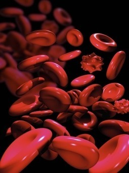 Doctors Studio » Platelet Rich Plasma Rejuvenation | Doctors Studio | Scoop.it
