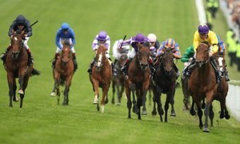 The Most Effective And Beneficial Horse Racing Bet Tips | Horse ... | Ladbrokes Bonus Code | Scoop.it