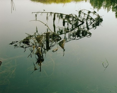 The Poetry of Elsewhere: Ron Jude's Lick Creek Line   Photography Now   Scoop.it
