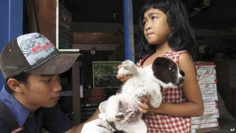 Experts Unveil Plan to End Rabies Globally via Dog Vaccinations | Virology and Bioinformatics from Virology.ca | Scoop.it