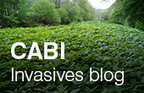 CABI Blogs: hand picked... and carefully sorted: Celebrating International Biodiversity Day! | Erba Volant - Applied Plant Science | Scoop.it