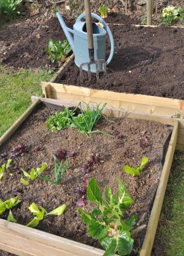 Comment bien entretenir son jardin | Construire sa maison neuve | Scoop.it