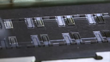 """These """"pulsing"""" chips could replace animal testing one day 