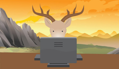 How a Facebook Page About Deer Went From 0 to 500K Likes (with No Ads) | Michael Pingree's Facebook Report | Scoop.it