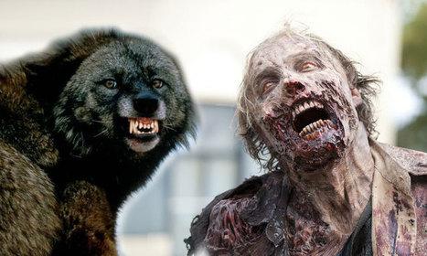 Zombie vs Animaux ? Les morts-vivants n'auraient pas la moindre chance… | NUMERIQUE I GEEK | Scoop.it