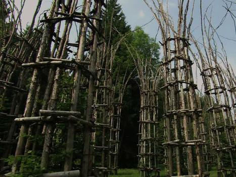 Cattedrale vegetale di Lodi: il work in progress della natura - Lodi - Arte.it | Circolo d'Arti | Scoop.it