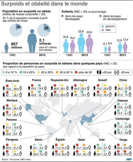 Obésité : 30 % de la population mondiale touchée | Sciences, l'Espace, le Temps et le Monde | Scoop.it
