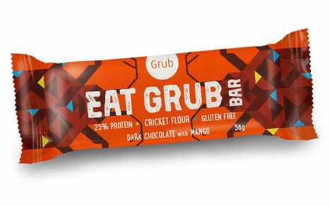 Grub to launch Kickstarter campaign for cricket snack bar | AgroSup Dijon Veille Scientifique AgroAlimentaire - Agronomie | Scoop.it