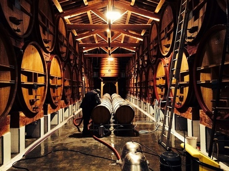 Château de Beaucastel: The Difficult Vintages   Vitabella Wine Daily Gossip   Scoop.it