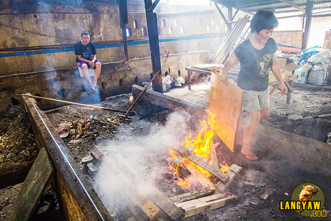 Visiting a lechon roaster in Talisay - langyaw   Philippine Travel   Scoop.it