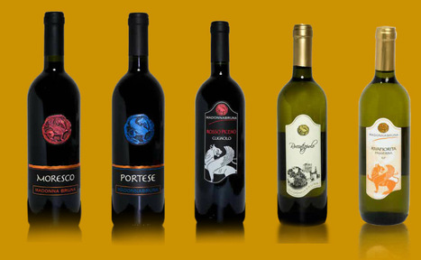 Madonnabruna, Fermo: Low Impact Farming Wines | Wines and People | Scoop.it