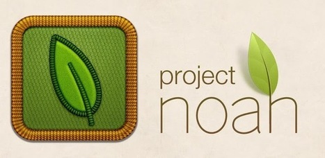 Project Noah - Applications Android sur Google Play | Android Apps | Scoop.it