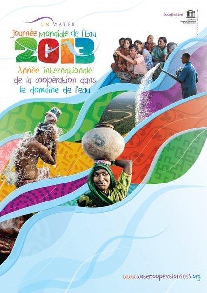 2013 : Année internationale de la coopération dans le domaine de l'eau | Curiosités planétaires | Scoop.it