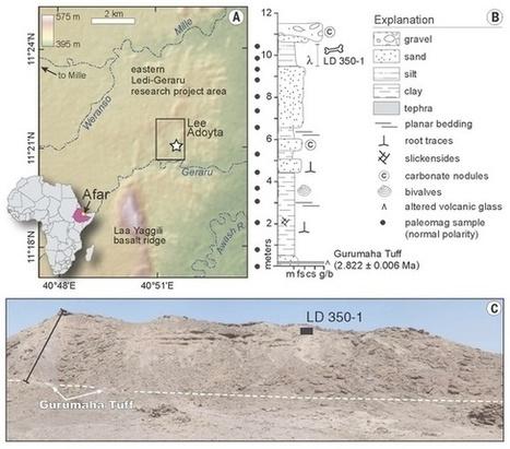 La découverte d'un fossile de 2,8 millions d'années vieillit le genre humain de 400.000 ans | Culture à la ferme | Scoop.it