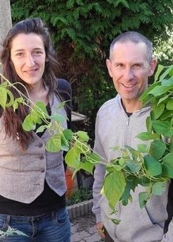 Jardins partagés.  « Vert le jardin » s'enracine à Saint-Brieuc | (Culture)s (Urbaine)s | Scoop.it