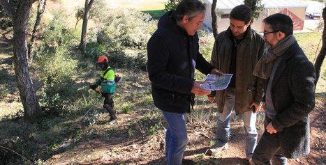 Treuen 1.744 tones de brossa de les Pedreres, a Girona | #territori | Scoop.it