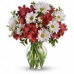 Flowers delivery USA :: Florist, Floral arrangements | Gorgeous Flowers Bouquets and more | Scoop.it