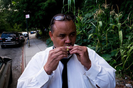 A Patch of the Bronx Where the Corn Is as High as a Cabdriver's Eye | Food issues | Scoop.it