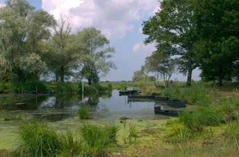 Parc Naturel de Brière: Les rendez-vous de la réserve 2012 | Revue de Web par ClC | Scoop.it