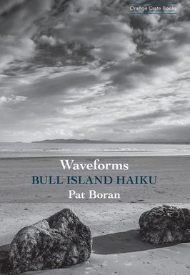 Pat Boran: Waveforms Bull Island Haiku | The Irish Literary Times | Scoop.it