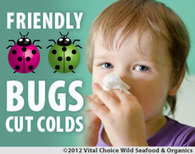 Friendly Bugs Cut Colds; Vitamin D Defeated - Vital Choice | REAL World Wellness | Scoop.it