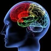 Förbättrad kondition leder till förbättrade prestationer i skolan | natasha psykologi GIP | Scoop.it