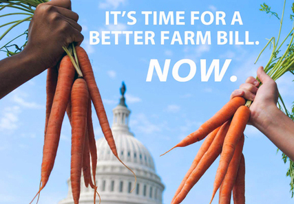 Farm Bill Extension in Fiscal Cliff Deal a Disgrace | EcoWatch | Scoop.it