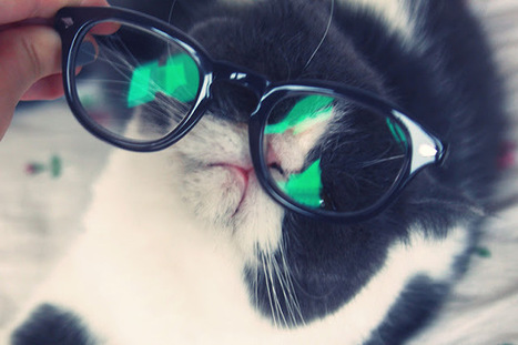 HEY DICKFACE ! Blog mode, tendances, photos, gourmandises ...   Eyewear   Scoop.it