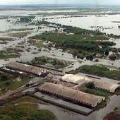 Inondations records dans l'Extrême-Orient russe   Risques et Catastrophes naturelles dans le monde   Scoop.it