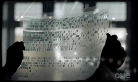 The DNA Detectives : la première émission au monde de généalogie génétique (Nouvelle-Zélande) | Nos Racines | Scoop.it