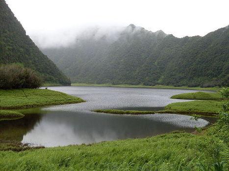 Quoi visiter à l'île de la #Réunion - A la découverte de la commune de la Plaine des Palmistes | La Réunion | Scoop.it