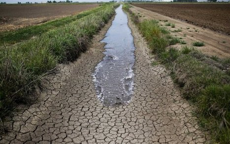 How Growers Gamed California's Drought | Sustain Our Earth | Scoop.it