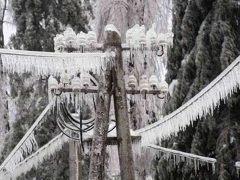 'Worst devastation in living memory' as Slovenia is paralysed by thick iceand snow | World News | Scoop.it