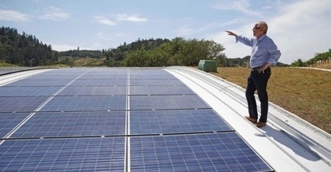 Wineries raising a glass and a (green) roof for eco-friendly design - Times Colonist   Smartplanet   Scoop.it