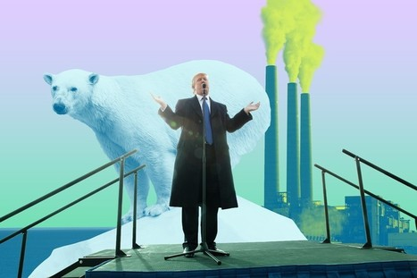 Donald Trump Is the First Demagogue of the Anthropocene | Eco issues | Scoop.it