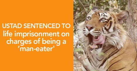 Ustad (T-24) Sentenced to Life Imprisonment | India Travel & Tourism | Scoop.it