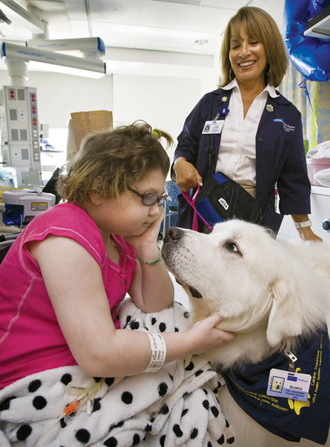 Hospital Lets Pets Visit Their Sick Humans To Make Them Feel Better | Organ Donation & Transplant Matters | Scoop.it