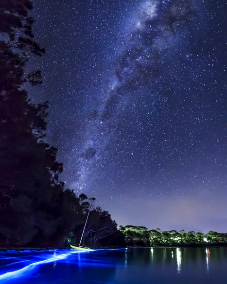 Bio-luminescent glowing planktons in Jervis Bay captured by Andy Hutchinson | What about? What's up? Qué pasa? | Scoop.it