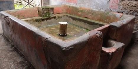 Orines y soda, el detergente de la Antigüedad | Mundo Clásico | Scoop.it