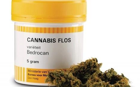Mediwiet vroeger en nu | Medicinale-cannabis | Scoop.it