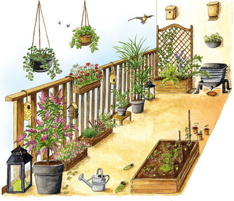 Mon balcon est un Refuge LPO - Refuges balcon - LPO (Ligue pour la Protection des Oiseaux) | Nature en vie | Scoop.it