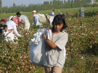 Certifying a Sustainable Supply Chain to Prevent Child Labour Abuse - Justmeans (blog) | Fairtrade | Scoop.it