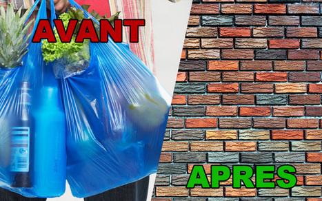 Une étudiante invente des briques de sac-plastiques recyclés | Economie sociale et solidaire, Alternatives | Scoop.it
