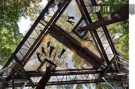 Treehouses for Grown-Ups | 建築 | Scoop.it
