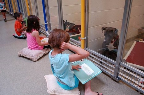 Tip of the Week: Invite Kids to Read to Shelter Animals | Library world, new trends, technologies | Scoop.it
